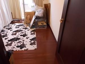宝塚市でベッド枠、まくらなど回収のアフター写真