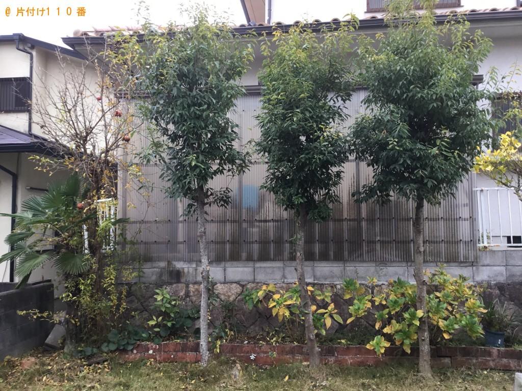 【川西市】庭木剪定、作業後の木の回収・処分ご依頼 お客様の声