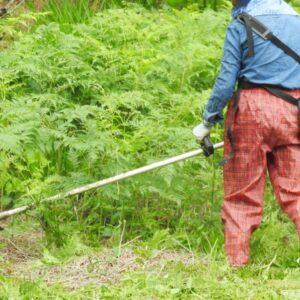 明石市で草刈りにかかる料金相場は?追加料金や業者選びのコツまで解説