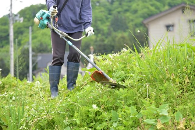 姫路市で草刈りに最適な年3回の時期~楽に草刈りを終えるコツまで徹底解説